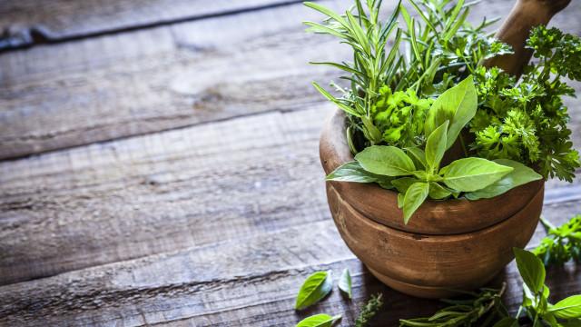 Alimentos que curam. À descoberta dos segredos das ervas aromáticas