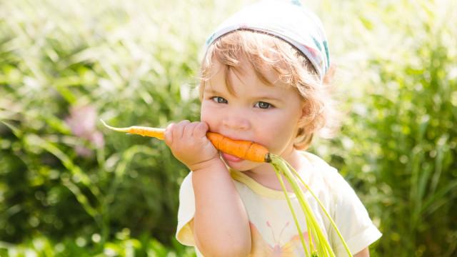 Entenda o perigo de alimentar as crianças com uma dieta vegan