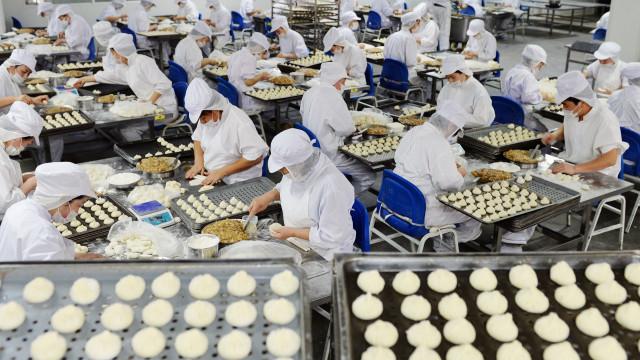 Produção industrial de alimentos vai matar cinco milhões até 2050