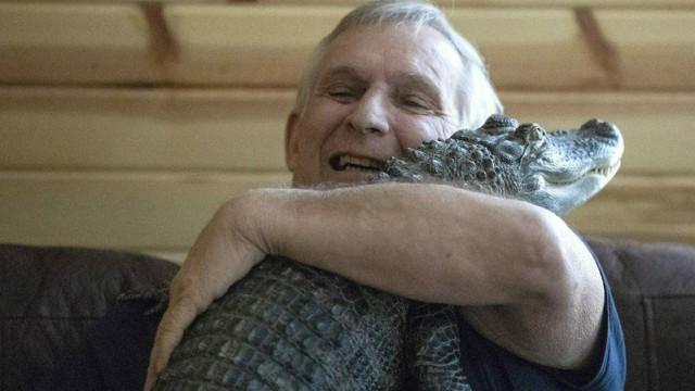 Homem adota crocodilo com 1,52m para o ajudar a lidar com depressão