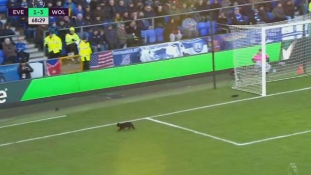 A louca corrida de um gato preto marcou o duelo mais luso da Premier