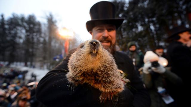A primavera chega mais cedo, prevê a marmota mais famosa dos EUA