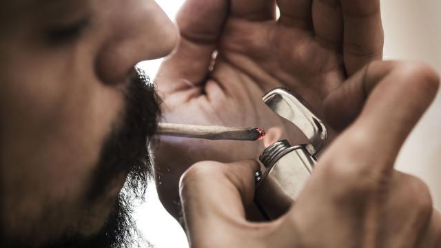Fumar canábis apenas duas vezes aumenta espermatozoides em 40%