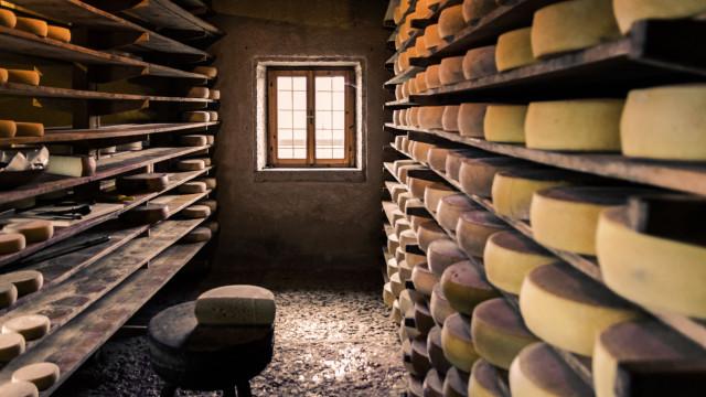Região Centro produziu 436 toneladas de queijos DOP em 2017