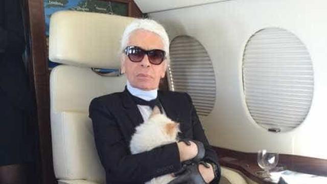 Gata de Karl Lagerfeld de luto após morte do 'pai'