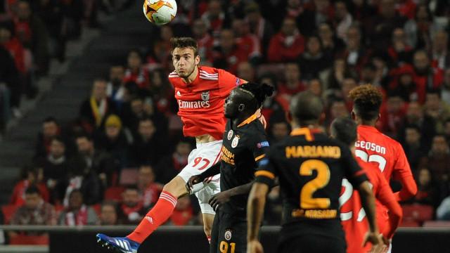Receitas das provas europeias do Benfica ultrapassam já os 50 milhões