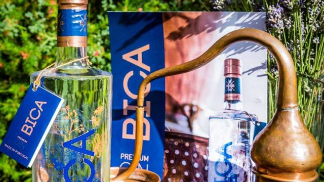Monte da Bica: Gin e vinho dão o mote a projeto alentejano