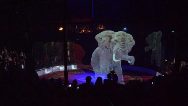 Há um circo com um espetáculo incrível de animais. E sem um único animal