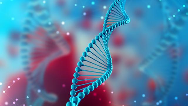 O que precisamos de saber sobre as mutações genéticas BRCA e o cancro?