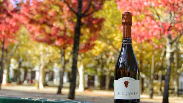 Bairrada tem o Melhor Espumante do Concurso Vinhos de Portugal 2019