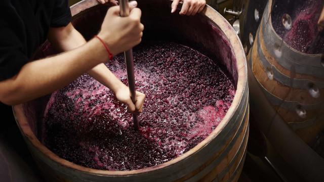 Adega Portalegre conquista prémio na maior competição de vinhos do mundo