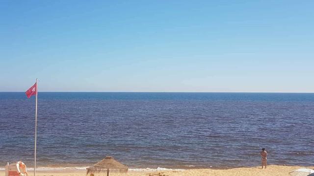 """Praias com bandeira vermelha no Algarve por causa de """"maré vermelha"""""""