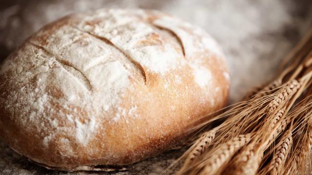 'Pão Caseiro': A ciência para ter sempre à mão pão fresco e bem saboroso