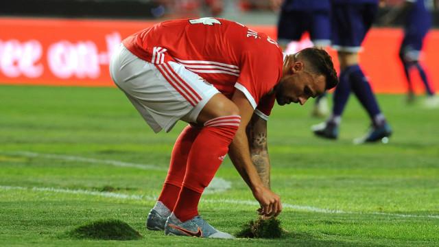 Benfica explica estado do relvado do Estádio da Luz