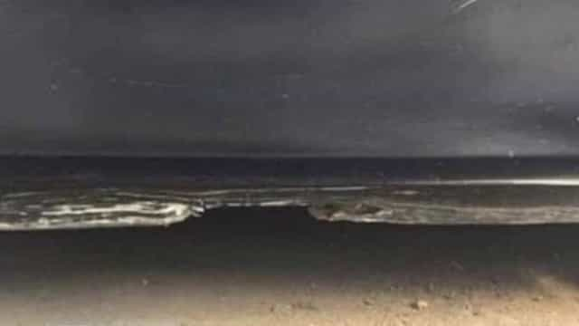 Uma praia à noite ou a porta de um carro? O novo desafio da internet