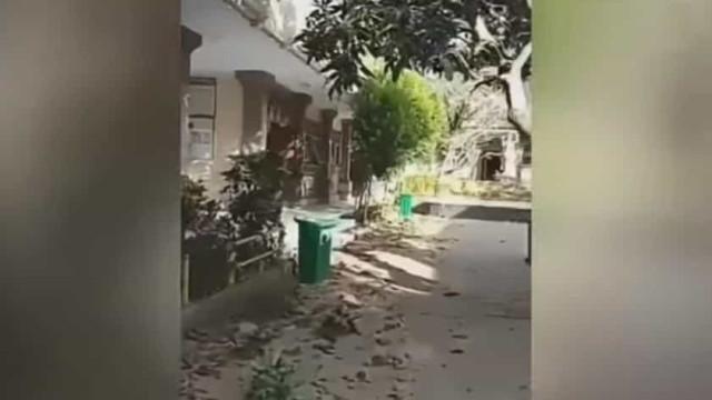 Sismo em Bali obrigou turistas a fugir de hotel
