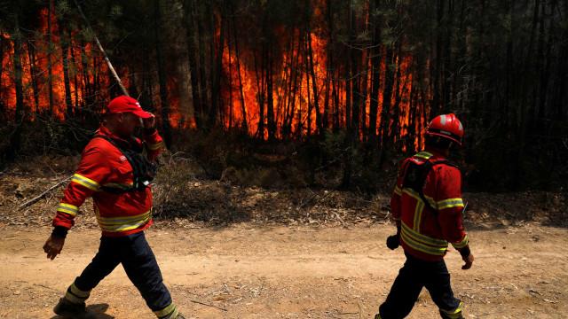 """Interior não pode continuar a ser """"pasto de chamas"""", avisa Cáritas"""