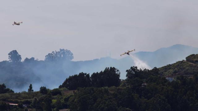 Madeira disponível para enviar meios para combate a incêndio nas Canárias