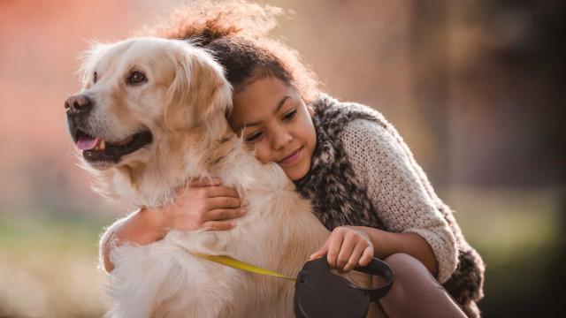 Quer falar com o seu cão? Saiba como o deve fazer, segundo a ciência