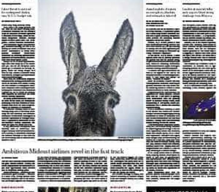 Portugueses comparados com burro mirandês pelo New York Times