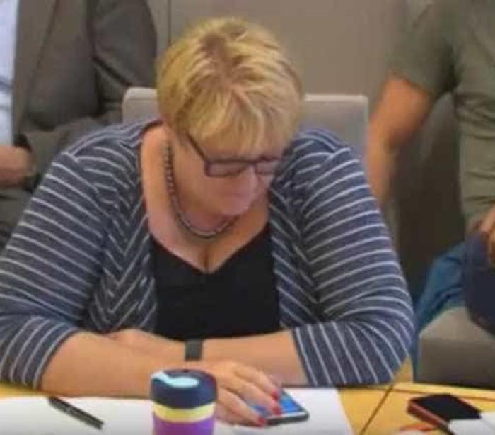 Deputada apanhada a jogar Pokémon Go durante comissão