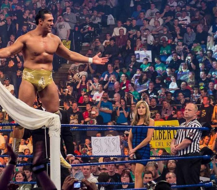 Pedido de casamento em ringue de luta no WWE