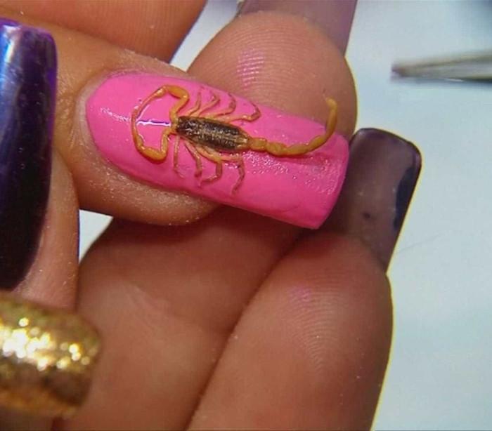 Unhas de escorpião são nova tendência no México