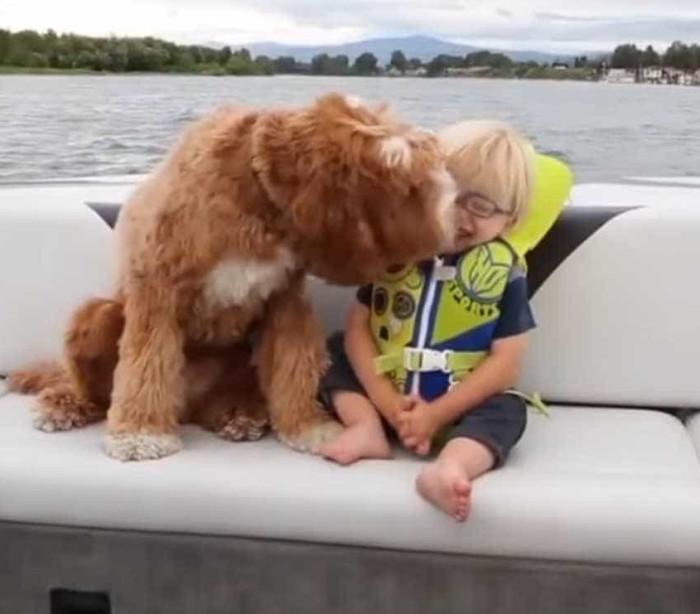 Tem três anos e já decidiu quem é o seu melhor amigo: um amoroso cão