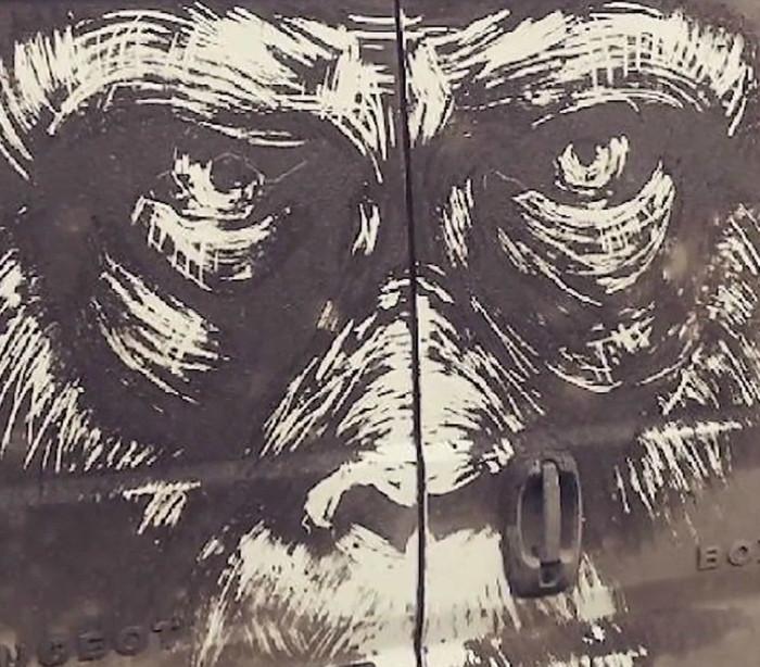 Pó em vez de tinta. Arte impressionante em carros sujos