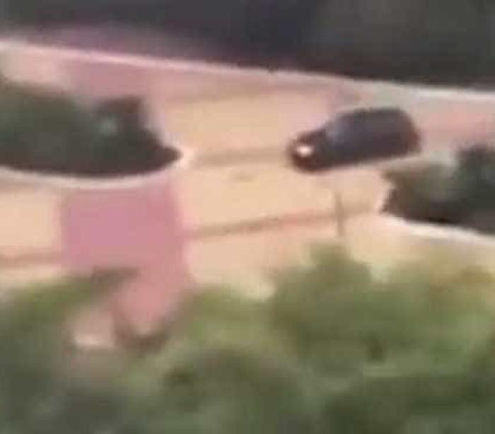 Condutor alcoolizado atropela turistas em Marbella