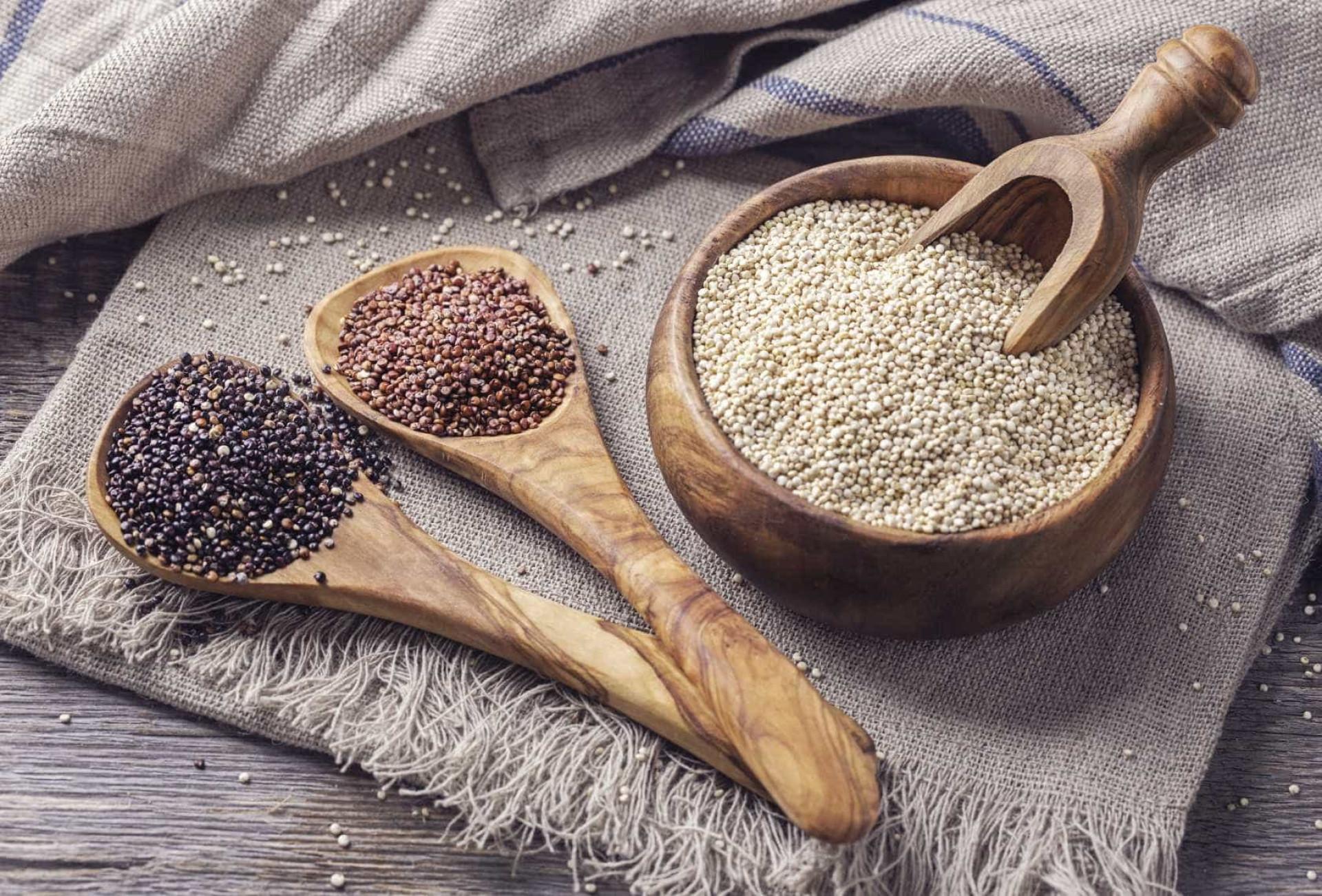 Uma centena de alimentos para combater a fome de forma saudável