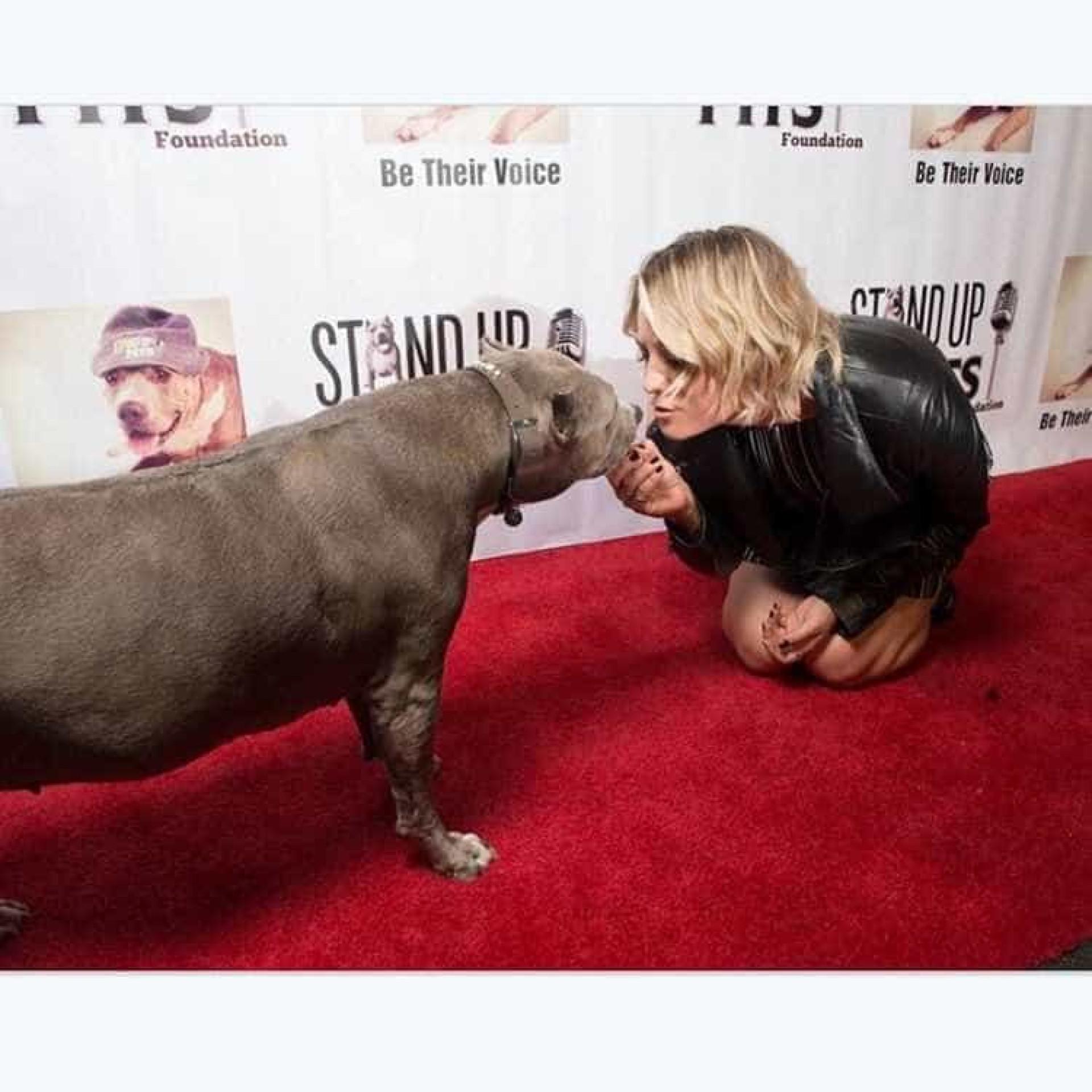 Kaley Cuoco faz 31 anos, confira as 31 melhores fotos da atriz