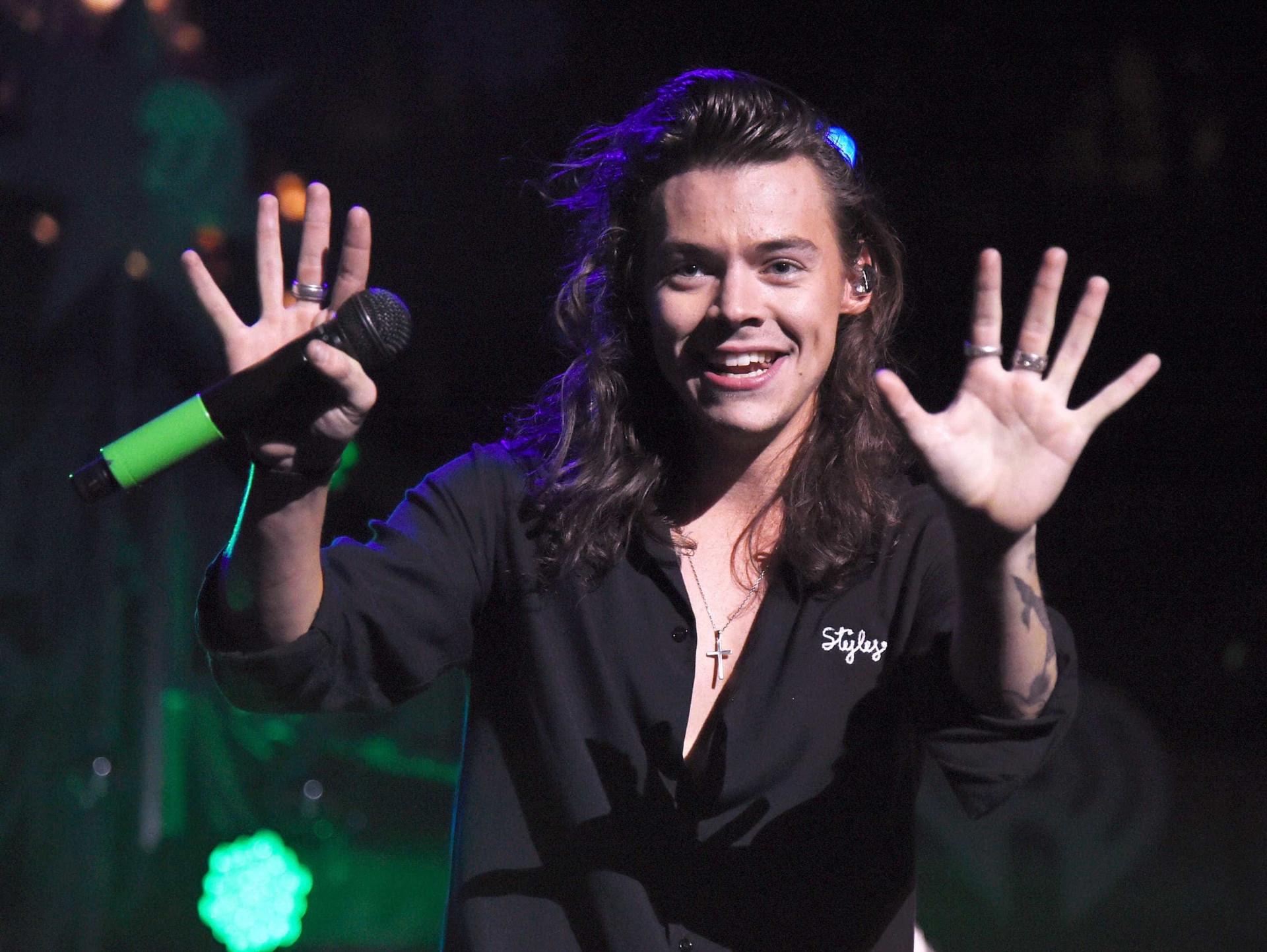 Harry Styles nos braços de um 'anjo'? Eis o novo amor do artista