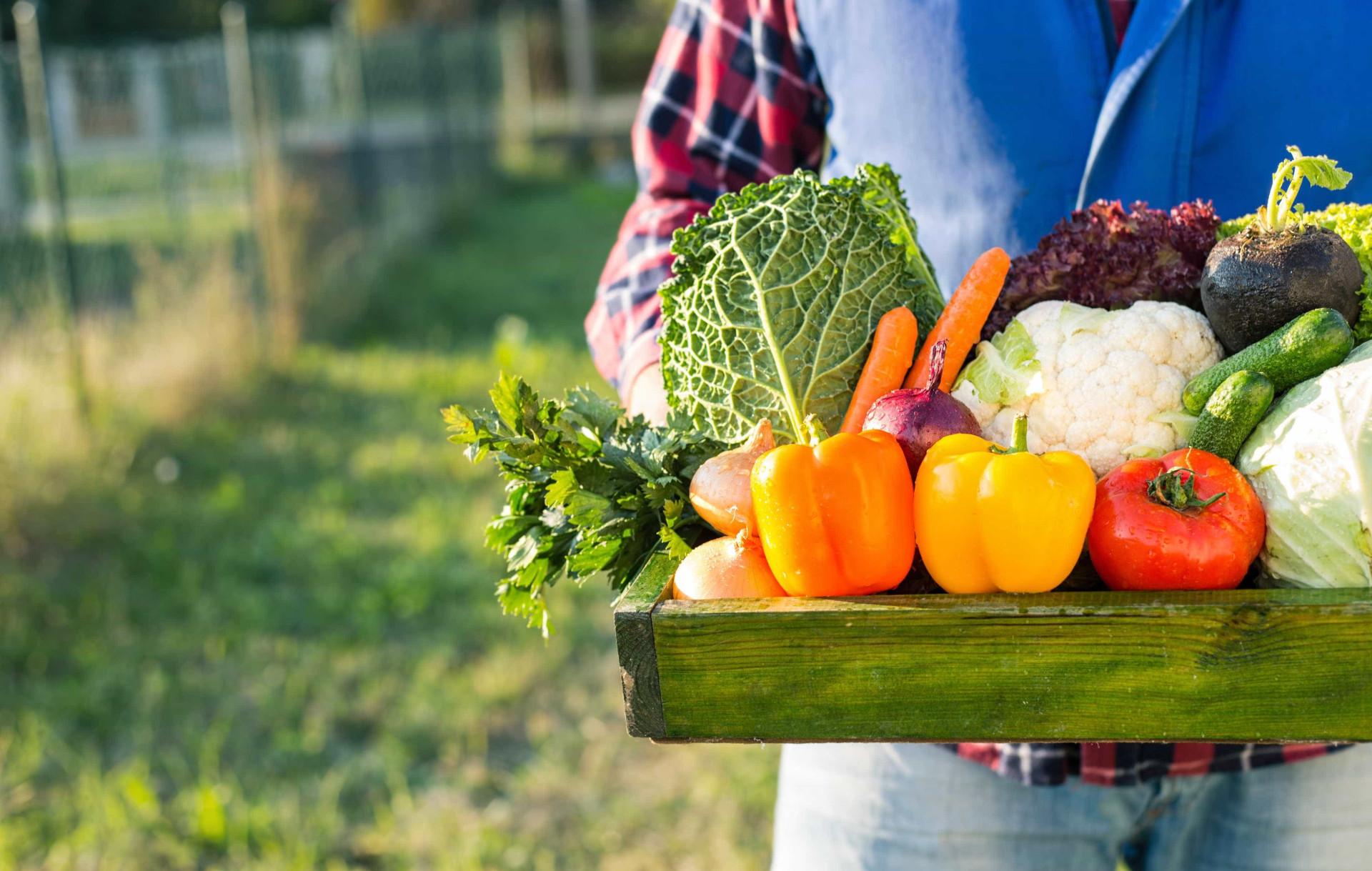 Estas frutas e vegetais têm uma validade mais longa do que imagina