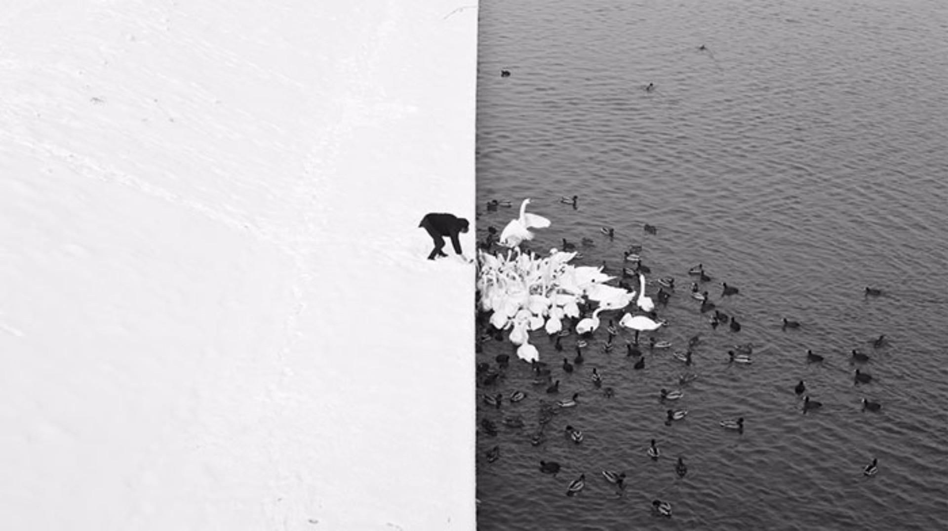 Estas imagens são tão incríveis que é difícil crer que não são montagens