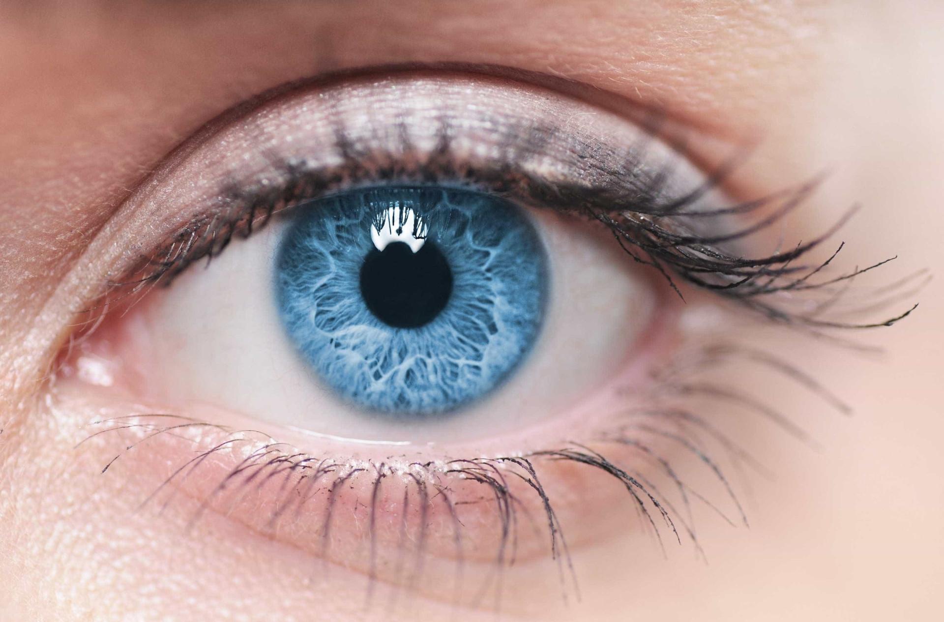 Tudo o que precisa de saber sobre a visão