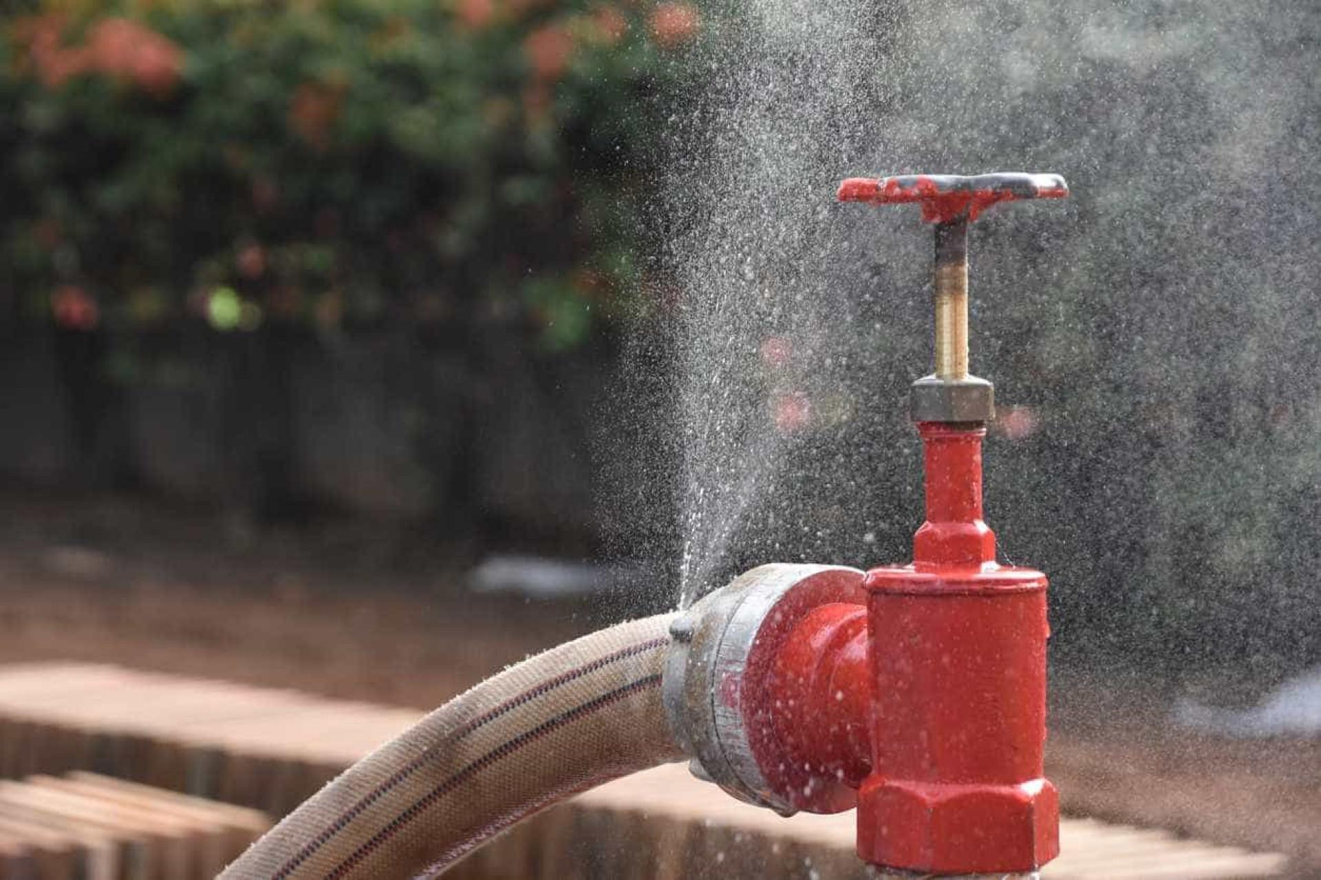 Portugal vive maior seca de sempre. Estes pequenos gestos podem ajudar