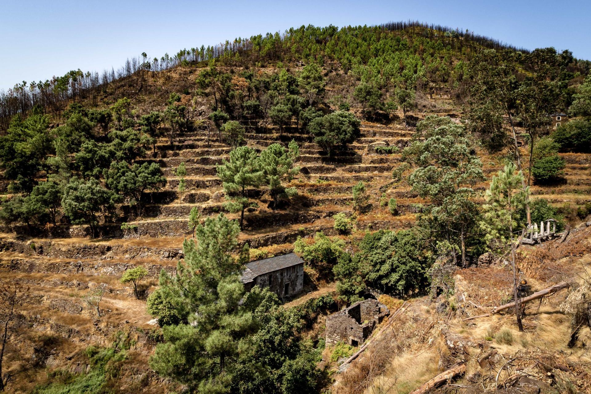 Há uma aldeia portuguesa à venda por 600 mil euros. Quer comprar?
