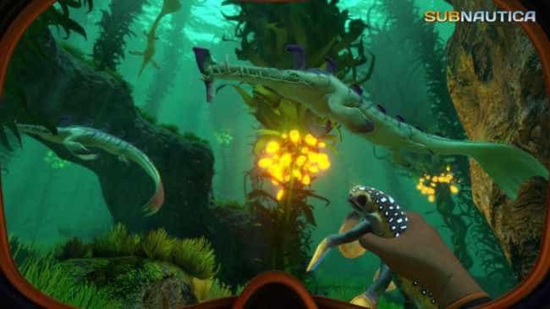 Steam: Conheça os jogos que tem de ter no seu PC