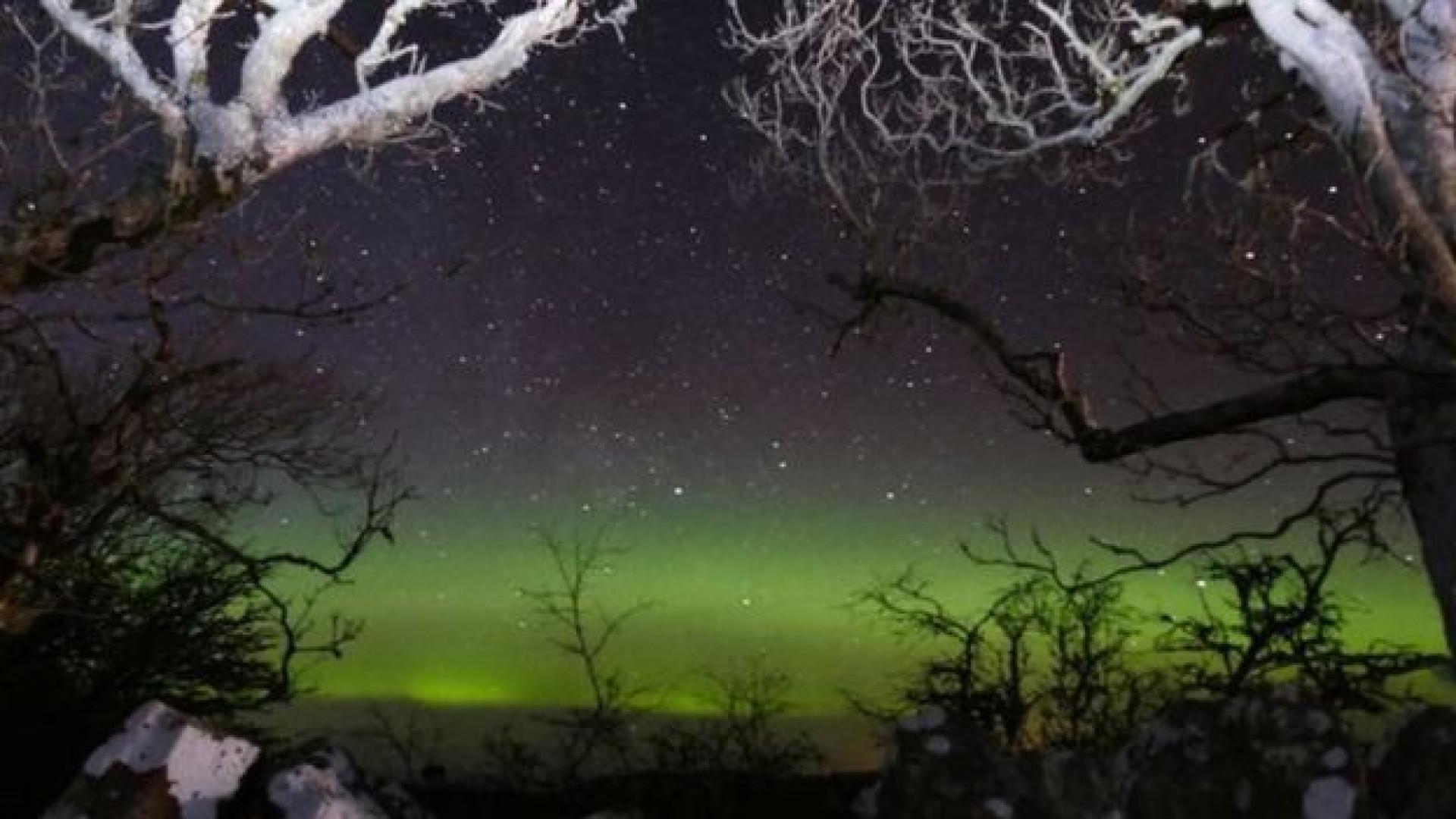 Steve, um dos grandes fenómenos da astronomia, foi avistado na Europa