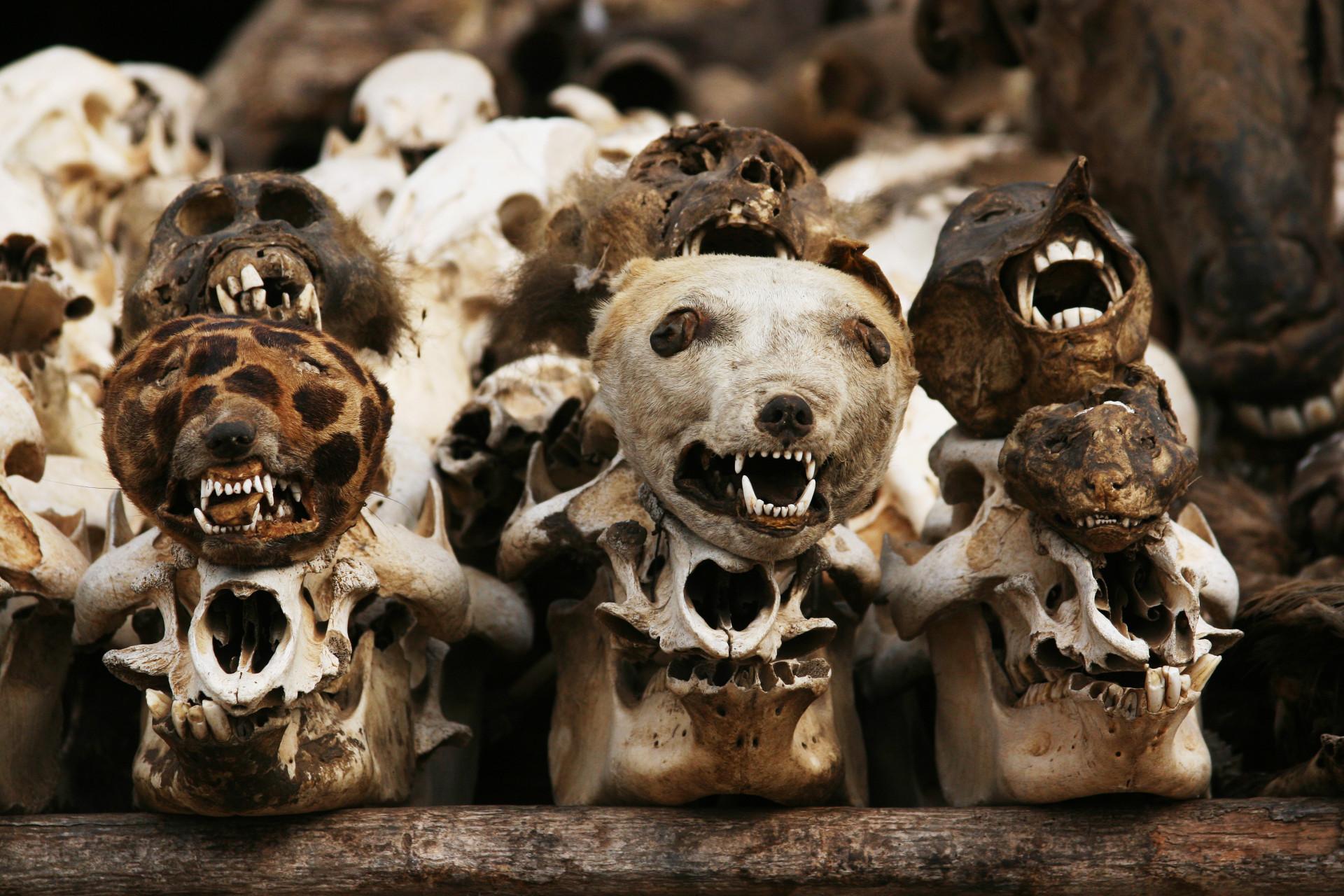 Estes são os 'cantos' mais sinistros do nosso planeta