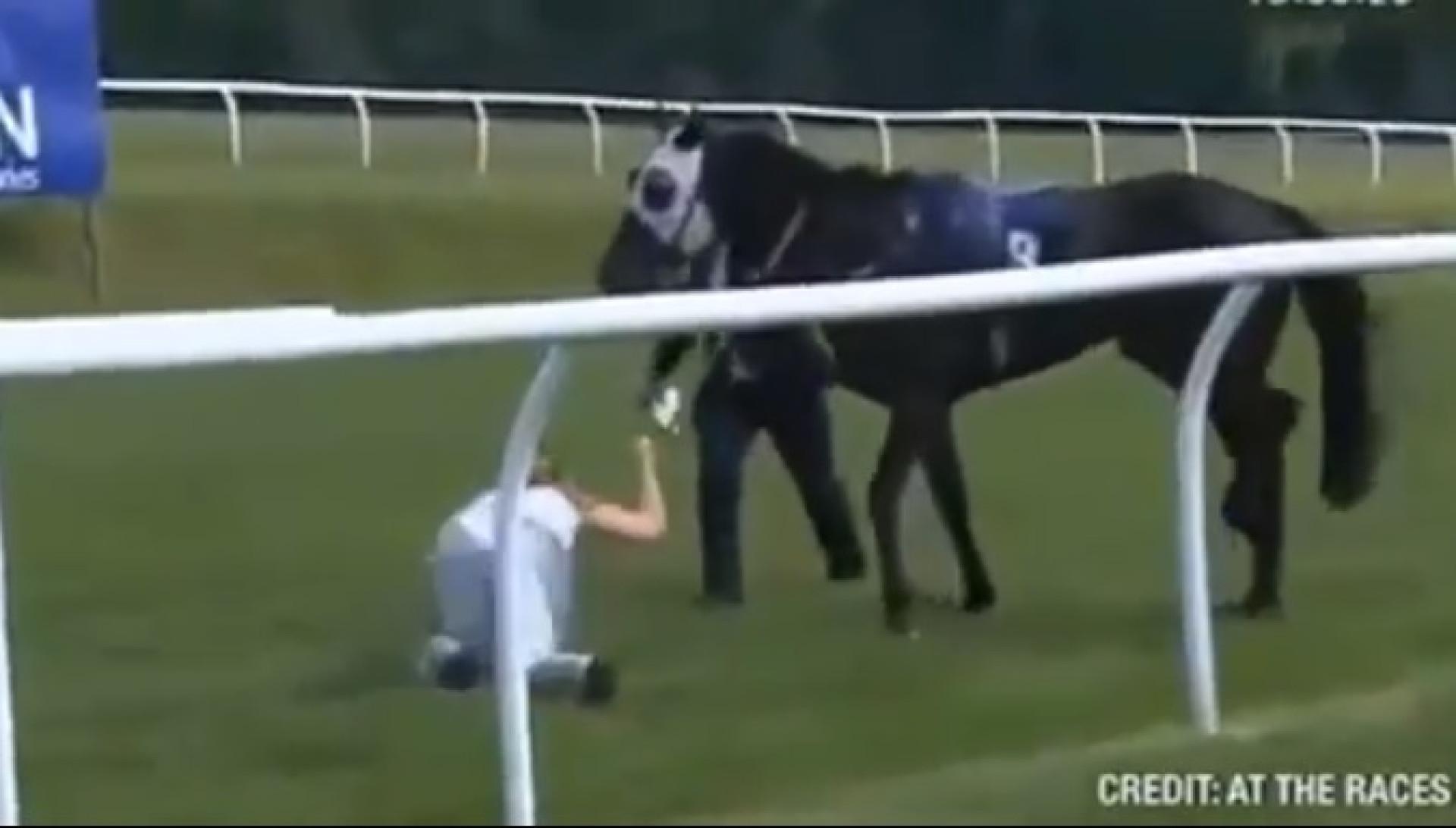 Apresentadora de corrida atira-se para a frente de cavalo em fuga