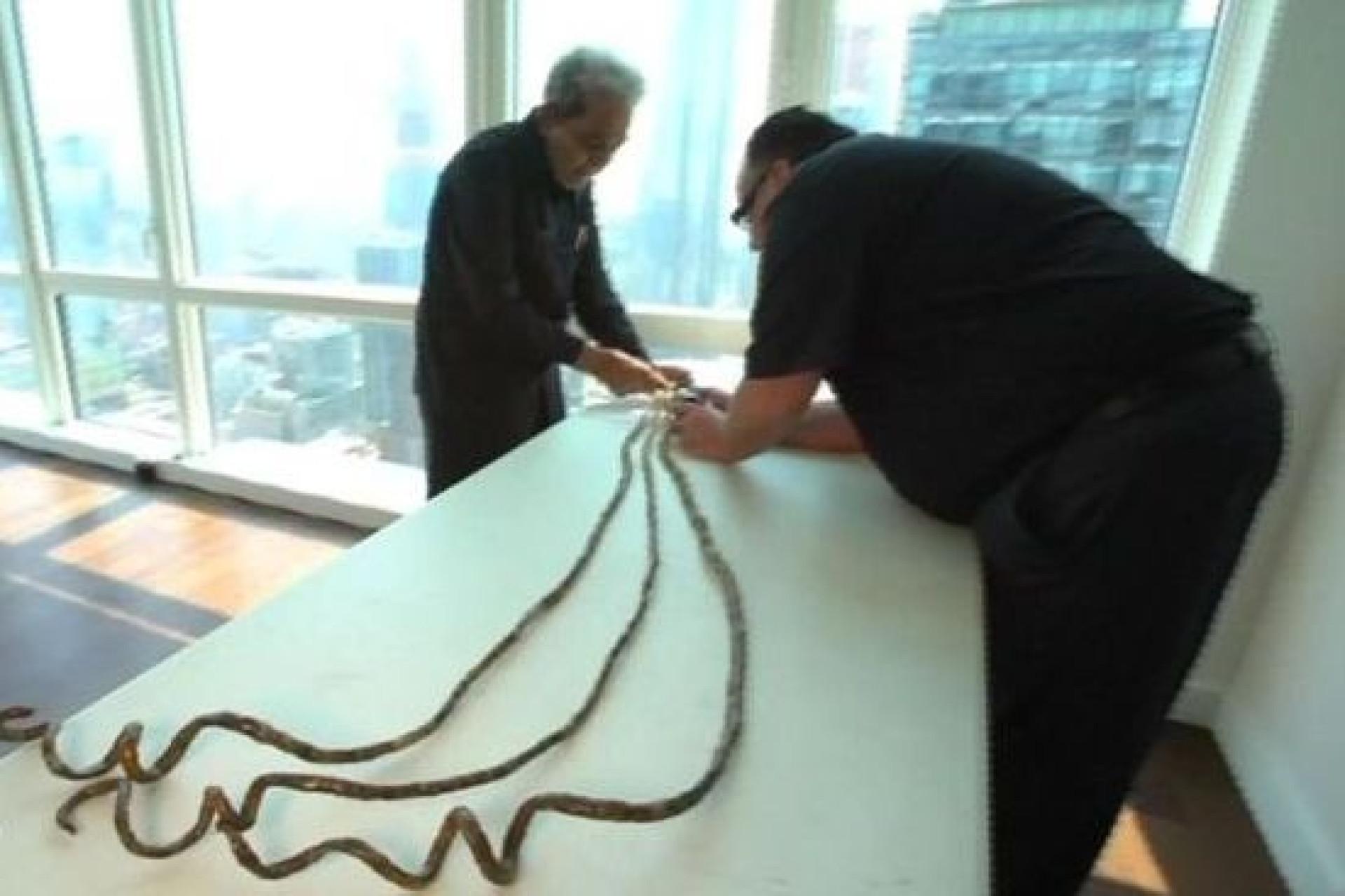 Após 66 anos, homem com as unhas mais compridas do mundo... cortou-as