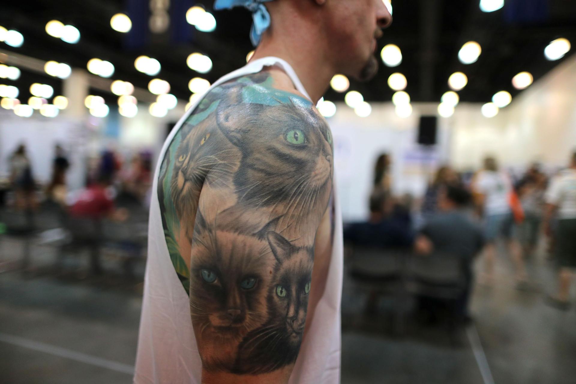 Fãs de gatos, coisas para gatos e gatos. Depois da Comic-Con, a CatCon