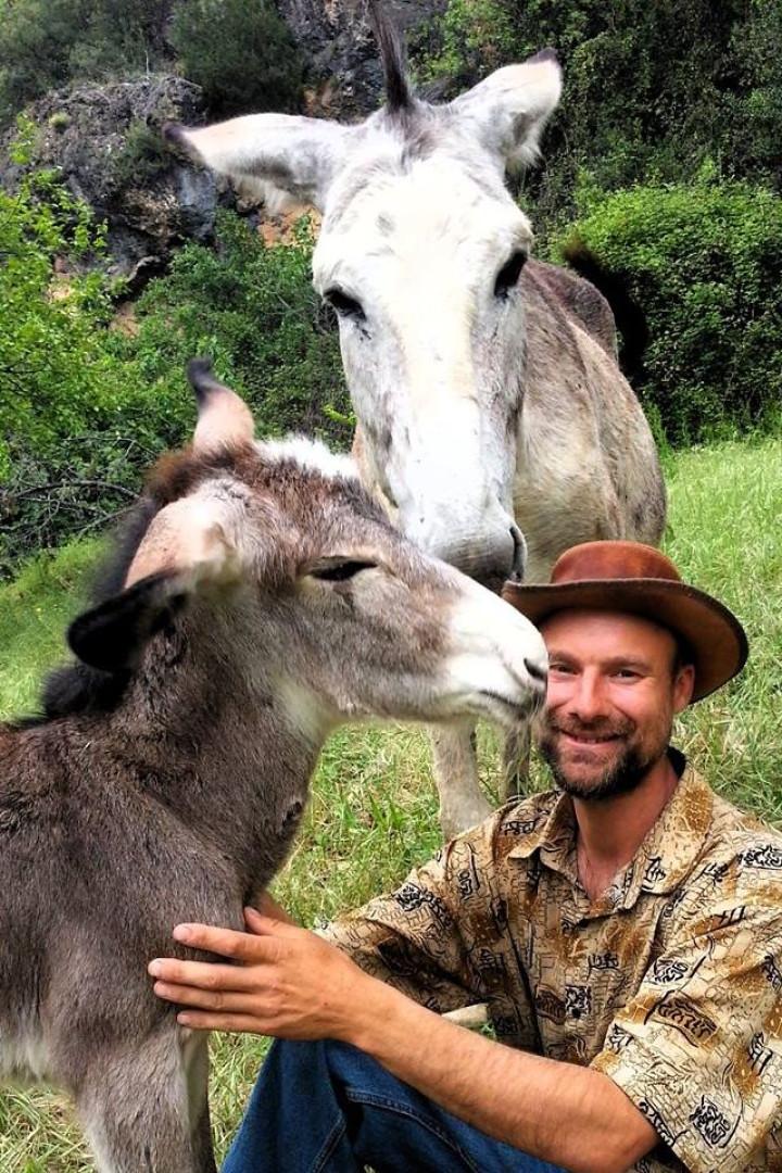 """Perdeu tudo, mas conseguiu salvar os animais. Chama-lhes """"burros felizes"""""""