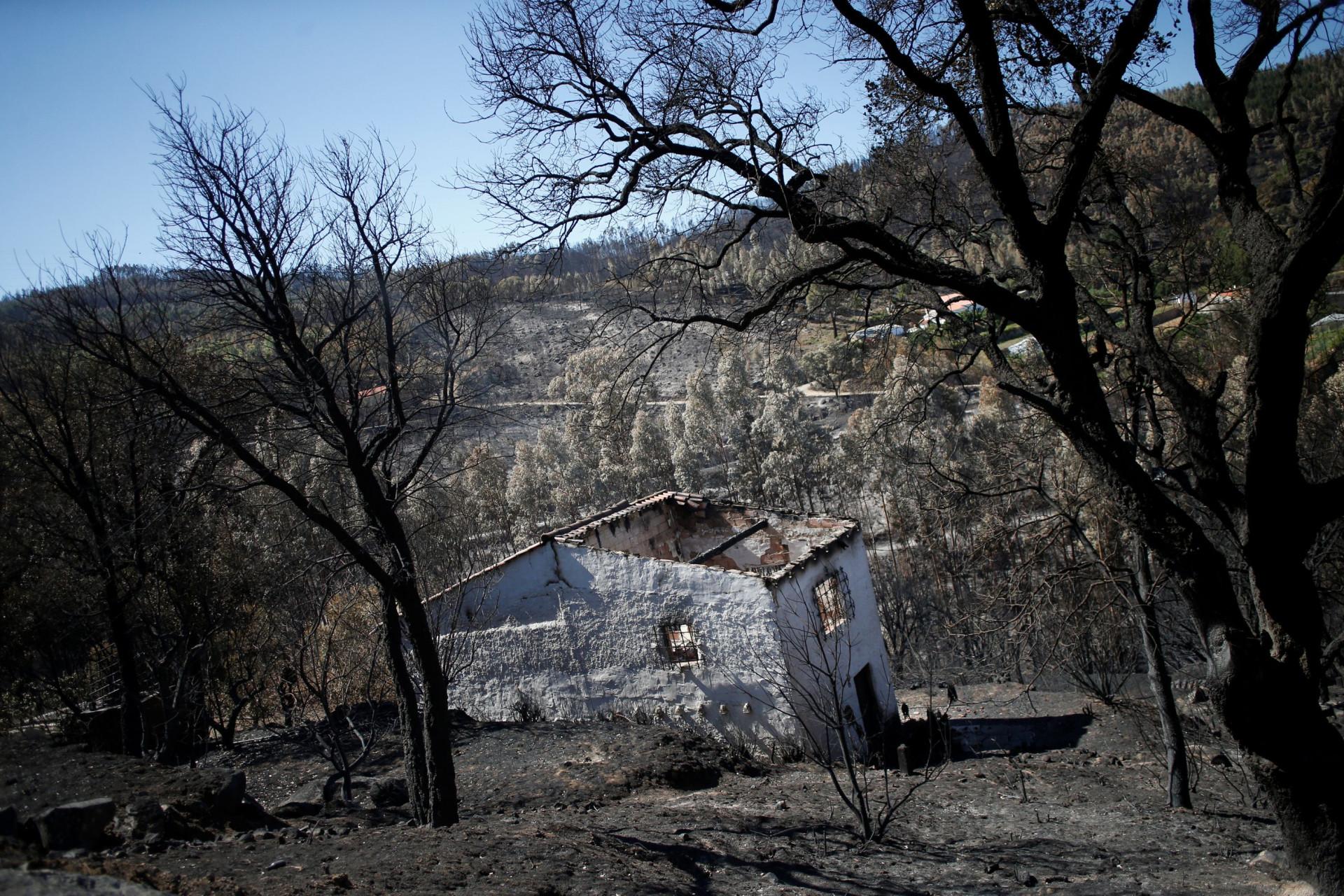Portugal em cinzas aos olhos da Reuters