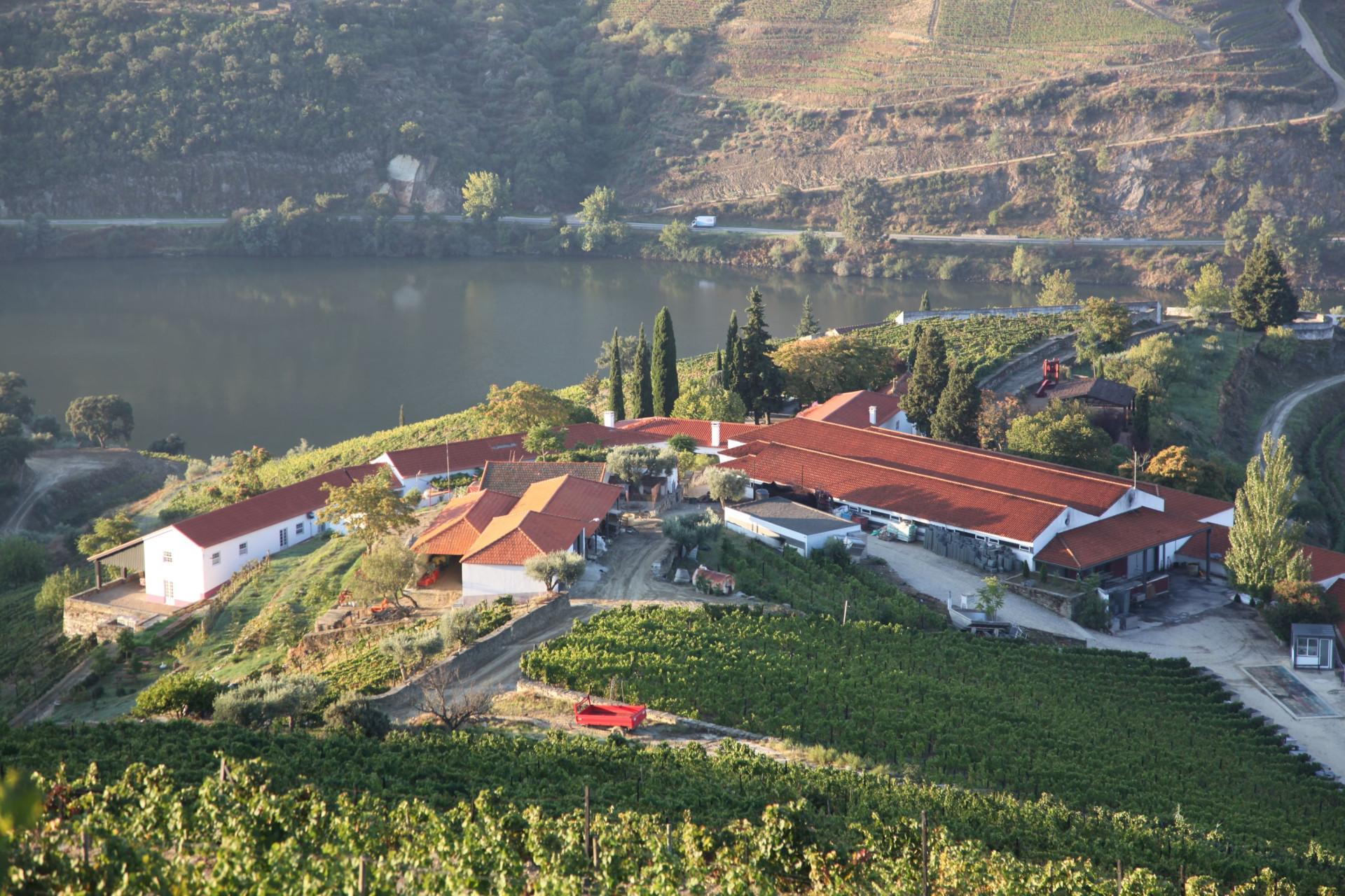 Brindar junto ao Douro num cenário de relaxamento. Atreve-se?