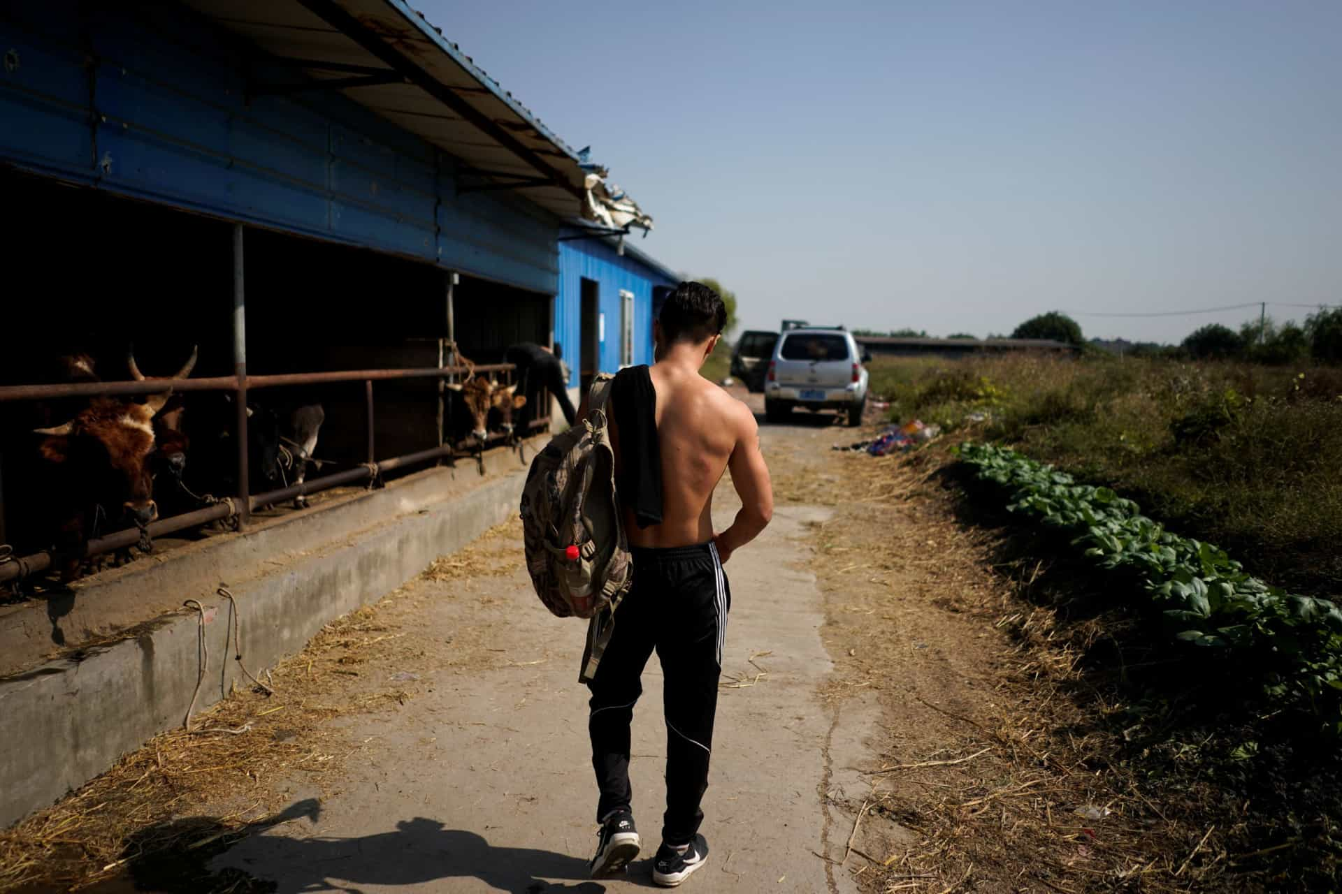 Na China há touradas com kung fu em vez de sangue