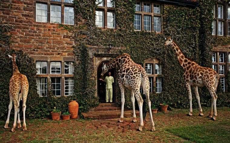 Só consegue pensar nas férias? Eis os 'hotéis mais maravilhosos do mundo'